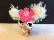 LITTLEST PET SHOP # 2485 FUZZY ANGORA RABBIT  AUTHENTIC W/ACCESSORIES