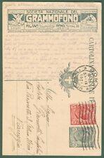 SOCIETA' GRAMMOFONO * Intero postale pubblicitario da cent. 15 grigio tipo Leoni