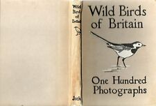 KIRKMAN WILD BIRDS OF BRITAIN THROUGH THE CAMERA 100 PHOTOGRAPHS HARDBACK