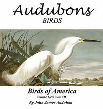 Antico VINTAGE Birds of America Audubon ILLUSTRAZIONI ART STAMPA SU CD