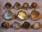 Gold Metal Buttons - Smoke Mother Of Pearl Inlay - Suit, Blazer, Sport Coat