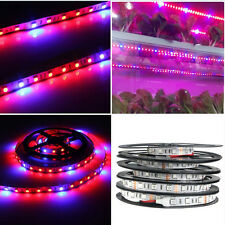 300LED 5M Plant Growing Light Indoor Grow Light Flexible Light Strip Red+Blue Ne