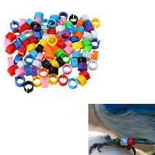 100pcs Chicken Hen Pigeon Leg Poultry Dove Bird Chicks Parrot Clip Rings Band