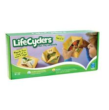 Lifecyclers Life Cycle of Plant Frog & Butterfly Visual Kinesthetic Science