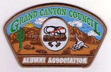 Grand Canyon Council SA-19 Woodbadge Alumni Association CSP Mint Condition