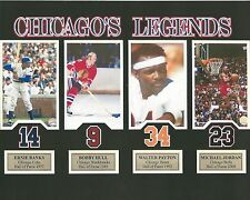 WALTER PAYTON BOBBY HULL ERNIE BANKS M JORDAN 8X10 PHOTO CHICAGO LEGENDS PICTURE