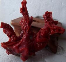 genuine natural red coral  hand carved ,masterpiece of Italian craftsmanship