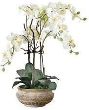 Artificial White Orchid With Brown Ceramic Pot - 58 Cm
