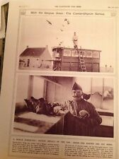 74-5 Ephemera 1917 Picture French Mobile Carrier Pigeon Van