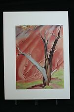 Georgia O'Keeffe Art Dead Tree With Pink Hill Book Print 1976 A. Colish OOP RARE
