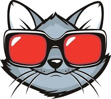 Cat Kitty Sun Glasses Cool Funny Sticker Decal Graphic Vinyl Label