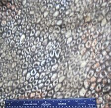"Brown Animal Like Print Blizzard Fleece Sewing Fabric 1yd + 32""  X 60"""