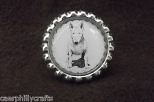Bull Terrier Dog Show Ring Clip by Curiosity Crafts