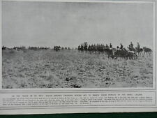 1915 SOUTH AFRICAN TROOPERS IN PURSUIT OF CHRISTIAN DE WET WWI WW1