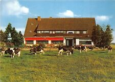 BG10435 cow vache cafe sonnenschein bad oeynhausen types   germany