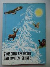 Sammelbilderalbum Zwischen Bergwald und ewigem Schnee Alpentiere Knorr Nährmitte