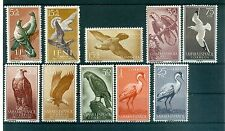OISEAUX - BIRDS SPANISH COLONIES Petit Lot