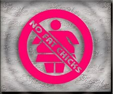 No Fat chicks -Drift Fun Auto Sticker- Dub Oem Jdm Scenesticker für Tuning Fans