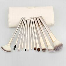 12-Piece Professional Synthetic/Pony Hair Kabuki Makeup Brush Set with Case
