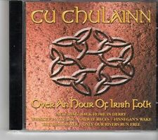 (FH994) Irish Folk, 20 tracks various artists - 2003 CD