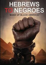 Hebrews to Negroes (BOOK): Wake up Black America