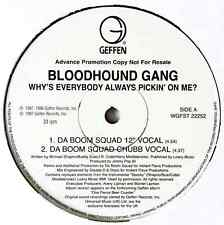 "BLOODHOUND GANG ‎- Why's Everybody Always Pickin' On Me? (12"") (Promo) (VG-/NM)"