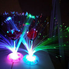 Color Changing Colorful LED Fiber Optic Night Light Lamp Stand Home Decors Gifts