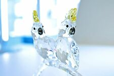 Swarovski Crystal Cockatoos Couple Love Bird Wedding 5135939 Brand New In Box