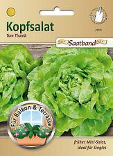 Kopfsalat 'Tom Thumb' - Lactuta sativa, Mini-Salat Saatband Samen Saatgut 43015