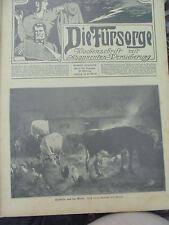 21327 Die Fürsorge Wochenschrift mit Abonnenten Versicherung 1912 31-52 kpl