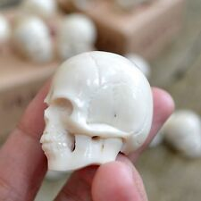 Hand Carved 40mm Head Skull Natural Buffalo Bone Carving Undrilled