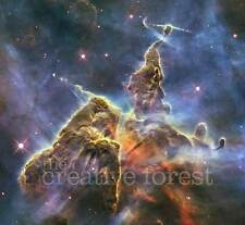 MYSTIC MOUNTAIN, Hubble Deep Space Reproduction Rolled CANVAS PRINT 27x24 in