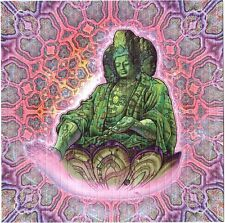 LUKE BROWN - BUDDHA BLOTTER ART  HIGH QUALITY  ALEX GREY