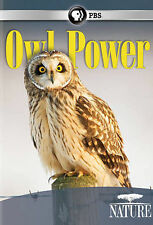 Nature: Owl Power 2015 by PBS