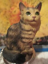 CAT MAINE COON BROWN TABBY   WINE STOPPER