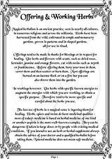 Book Of Shadows Pages - Over 800 Printable Pages -Spells, Rituals, Magic & More