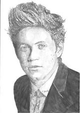ONE Direction 'Niall Horan Schizzo a4 Print