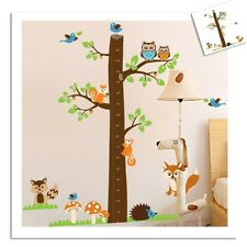 Squirrel Owl Fox Birds Tree Height Chart Measurment Kid Wall Decal Vinyl Sticker