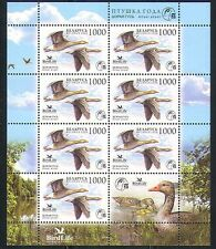 Belarus 2009 Grey Goose/Birds/Nature 7v sht (n32347)