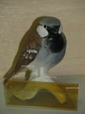 +# A015567_14 Goebel Archiv Muster Vogel Bird Sperling sparrow 38-022 matt