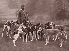 GREYHOUND GENTLEMAN AND TWELVE DOGS LOVELY OLD IMAGE ON DOG GREETINGS NOTE CARD