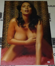 Tera Patrick Signed 20x30 Photo PSA/DNA COA Picture Poster Hustler Penthouse 28