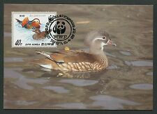KOREA MK VÖGEL MANDARINENTE MANDARIN DUCK ENTE CARTE MAXIMUM CARD MC CM d5400