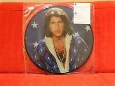 PICTURE DISC COLLECTOR EDITION LIMITEE  MIKE BRANT