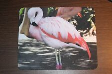 Pink Flamingo Computer Mouse Pad. (Size - 9.25 x 7.75 inches. 1/8 inch thic