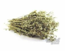 Hyssop, dried, herb, whole plant, Greek 100g (3.5oz.)