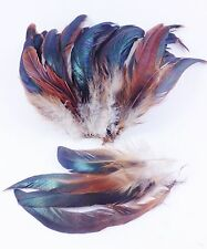 "100+ NATURAL HALF BRONZE GINGER SCHLAPPEN ROOSTER CRAFT FEATHERS 6""L-7""L"