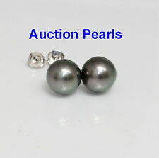 Tahitian Peacock Pearl Stud Earrings 14kt White 11 - 12 AAA Flawless