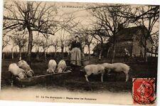CPA La Vie Normande - Repas sous les Pommiers (272174)
