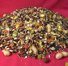 Cockatiel Fruity Mix Food 2 KG Fruit Nut Cockatiel Parakeet Parrot Lovebird Mix
